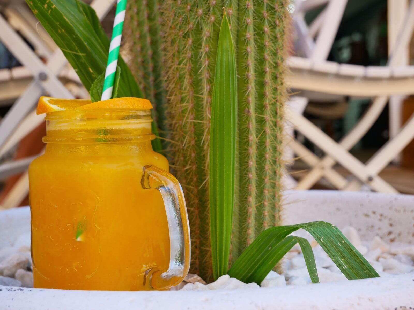 juice-ronas-ibiza